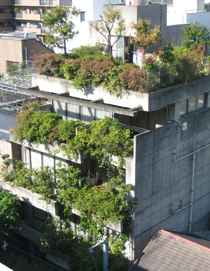 心に残る緑化(4)西澤文隆による垂直の庭 | 日経クロステック(xTECH)