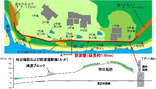 浜岡原子力発電所の防波壁と砂丘堤防の位置。上が平面図で下がA-A'断面図